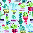 Baby Blue Cacti  by TigaTiga