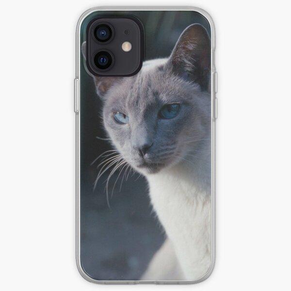 Der Aristokrat, Blauer Punkt Siamese iPhone Flexible Hülle