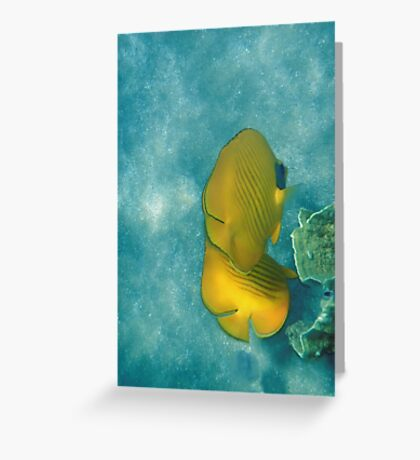 The Masked Butterflyfish Turquoise Greeting Card