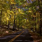 Harriman Road by photoloi