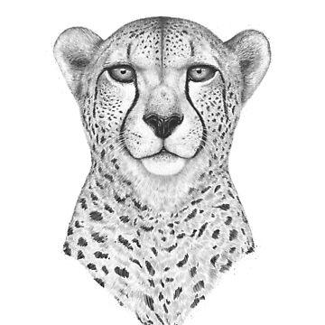 Cheetah by kodamorkovkart
