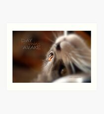 Day Dreaming Awake © Vicki Ferrari Photography Art Print