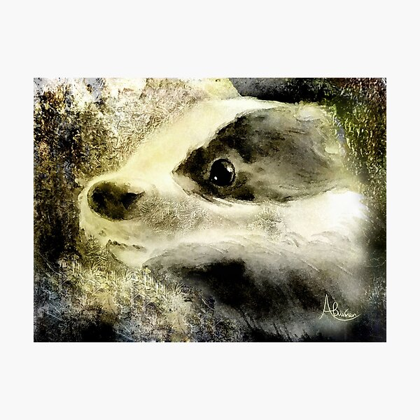 Baby Badger Photographic Print