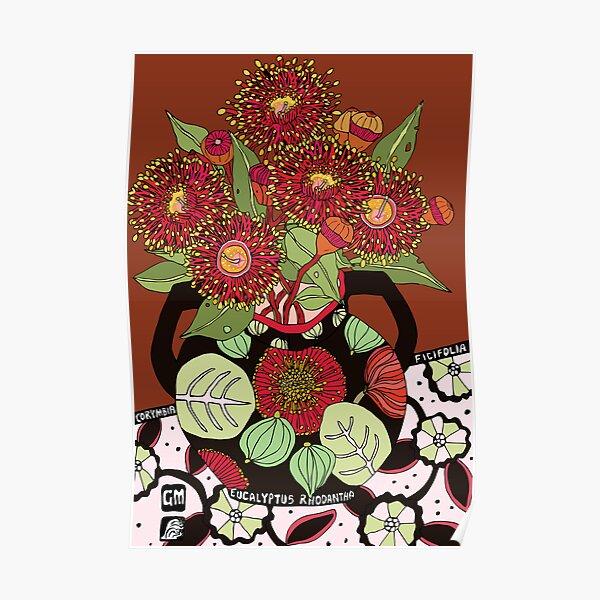Corymbia Ficifolia Poster