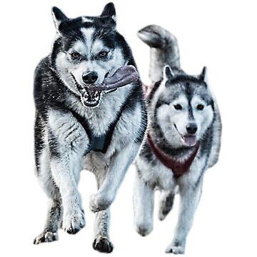 Siberian Husky Racing Shirt by markstones