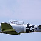 Paradise in flight WWII trainer (2) by Linda Costello Hinchey