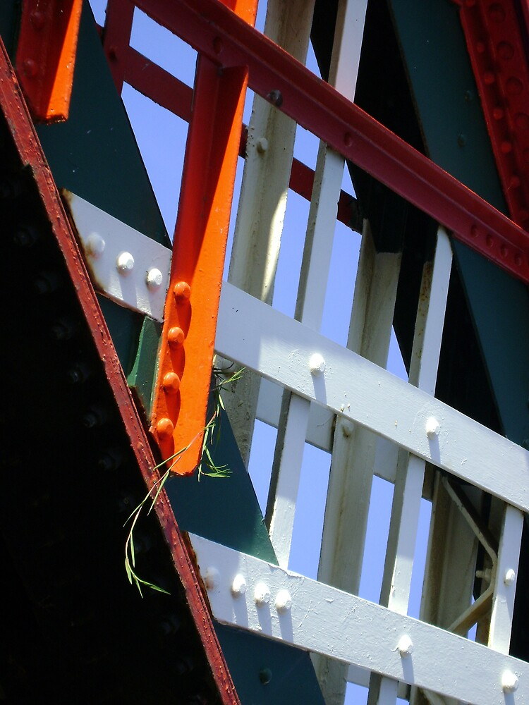 amid steel (plant and bridge-girders) by armadillozenith