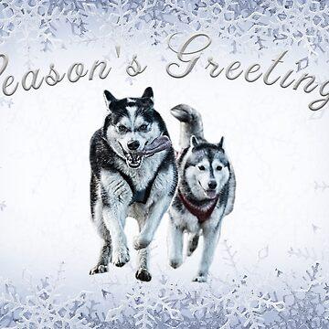 Husky Christmas Card by markstones