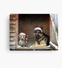 Christmas is for everyone Canvas Print