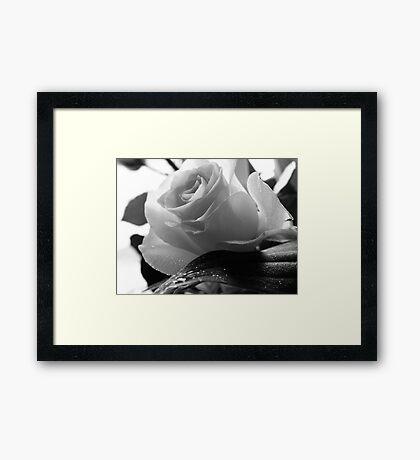 Rose Crystal Framed Print