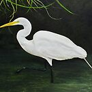 Egret - Tropical Bird by Brad A. Thomas