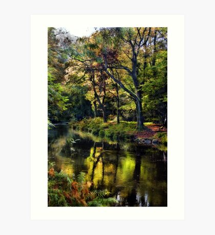 Autumnal River Devon Art Print
