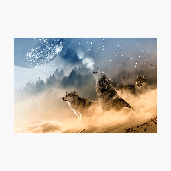 Wolf Trio and the Moon Photographic Print