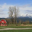 Little Red Barn by PrairieRose