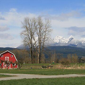 Little Red Barn by PrairieRose