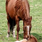 Me & Mom by PrairieRose
