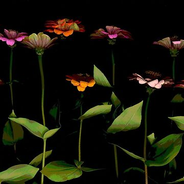 Zinnia Garden I Dark Floral by LindasPhotoArt