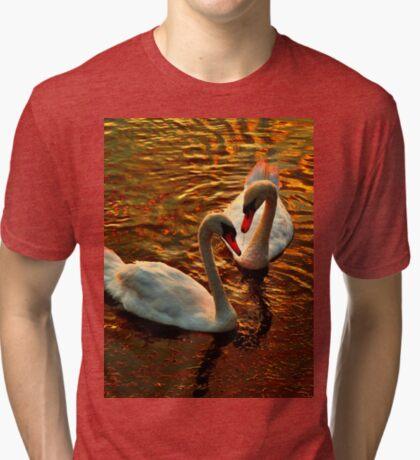 Swan's faithfulness Tri-blend T-Shirt