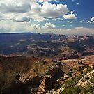 The Grand Canyon - Arizona by Julia Washburn