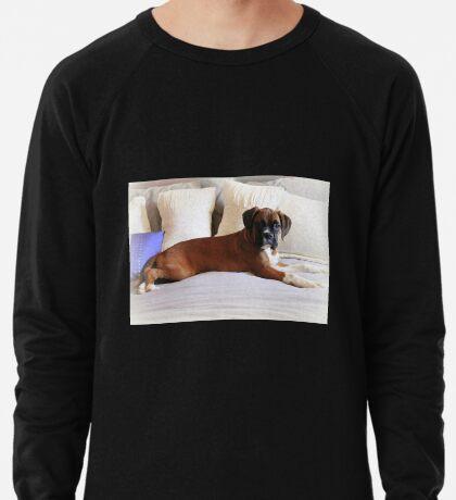 Nicht mein Bett ... sagst du? - Boxer Dogs Series Leichtes Sweatshirt