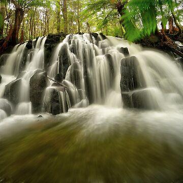 Upper Cam Falls, Tasmania by kevinmcgennan