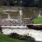 Footbridge at Mammoth Spring by Susan Russell