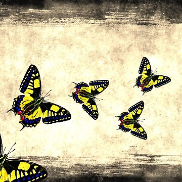 Butterfly on Vintage Grunge Background by rtaylor111