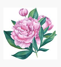 Watercolor Peony Bouquet Photographic Print