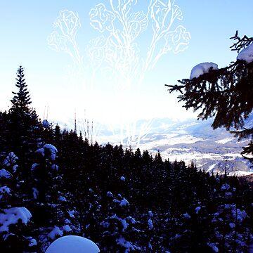 Ice flowers by ViiGlory