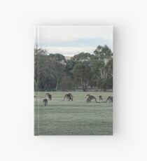 Our paddock now Hardcover Journal
