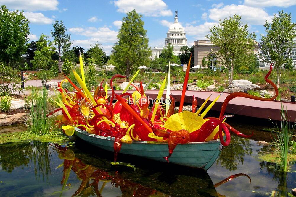 Botanical Garden   Washington DC By Bkphoto