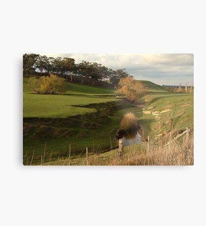Green Pasture,Daylesford District Metal Print