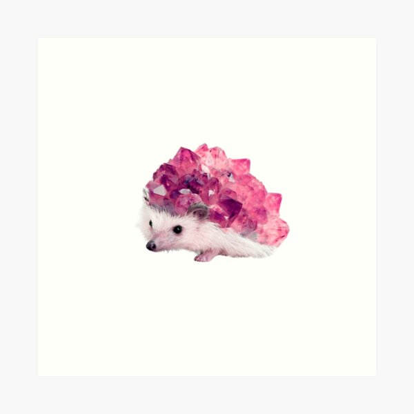 Lucky Mineral hedgehog by Alice Monber Art Print