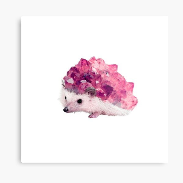 Lucky Mineral hedgehog by Alice Monber Metal Print