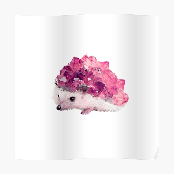 Lucky Mineral hedgehog by Alice Monber Poster