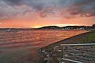 Belmont sunset by Liz Percival