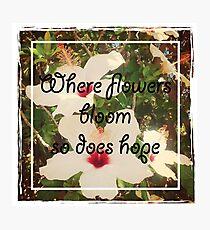 Flowers Bloom Photographic Print