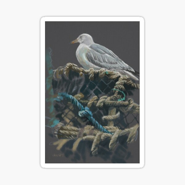 Seagull at St Ives Sticker