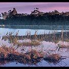 Glenbrook Lagoon Sunrise by STEPHEN GEORGIOU PHOTOGRAPHY