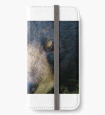 Bear close up iPhone Wallet/Case/Skin