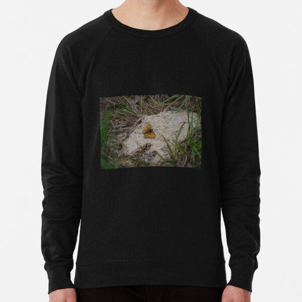 Fritillary Butterfly Lightweight Sweatshirt