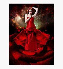 Rose Impression photo