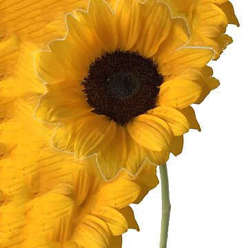 Sunflower, Spring, Flowers by My-Store-81