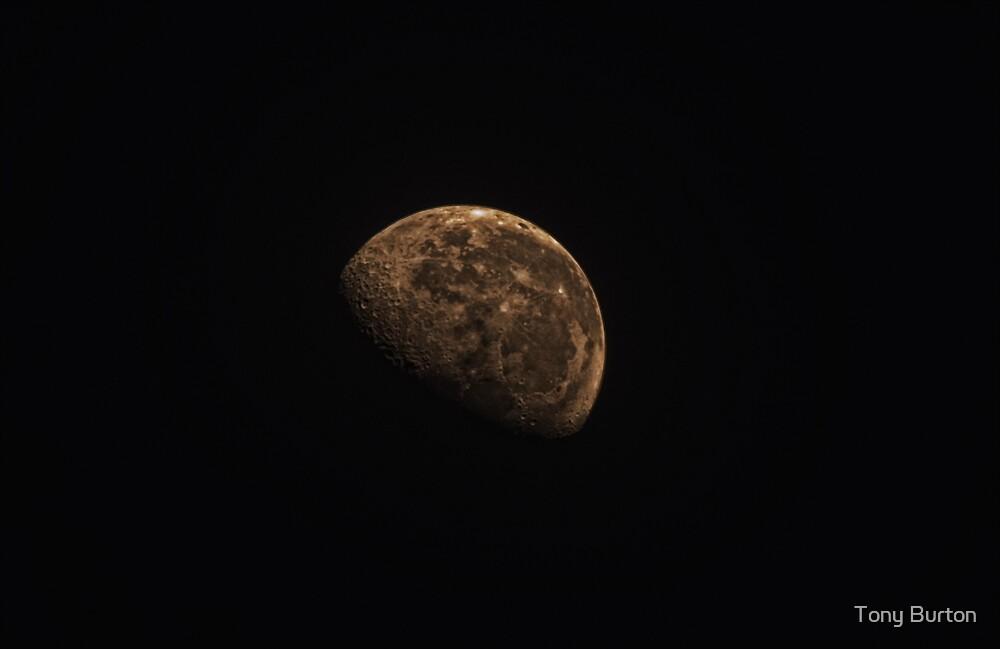Waning Gibbous Moon by Antony Burton
