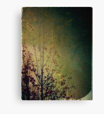 Lingering reverie Canvas Print
