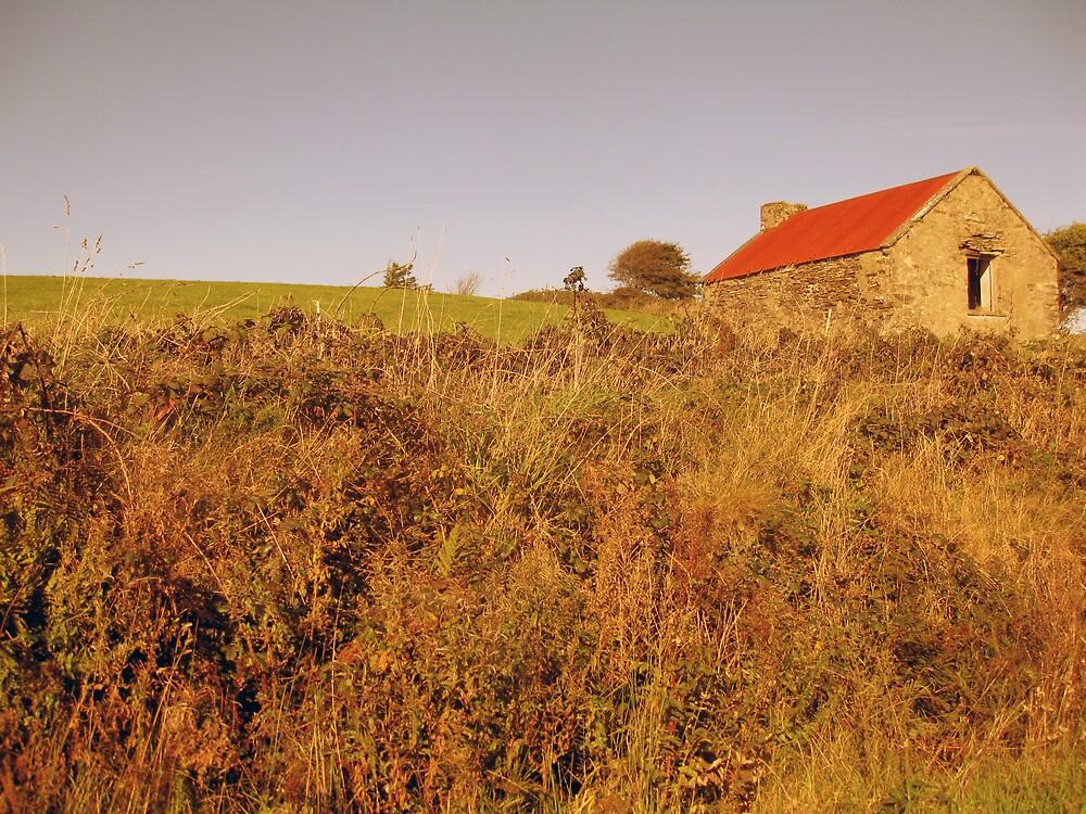 Rural Irish cabin by John Quinn