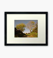 Rural Irish country path Framed Print