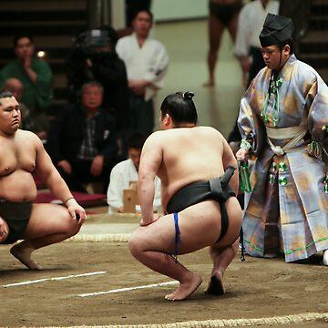 sumo by ryfoto