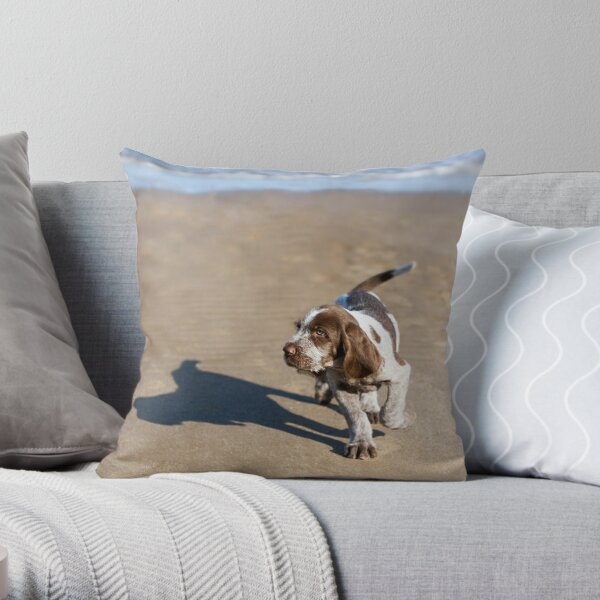 Shadow Spinone Throw Pillow