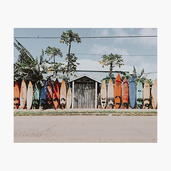 Let's Surf VI Photographic Print
